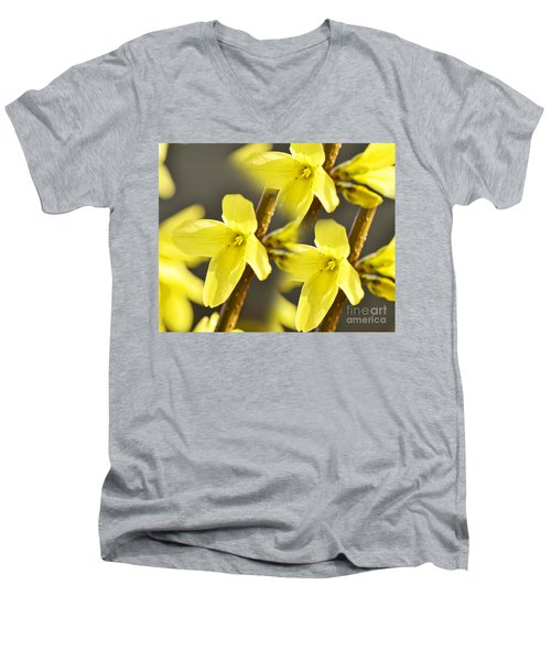 Forsythia Three Men's V-Neck T-Shirt
