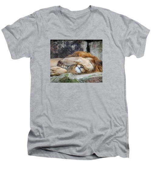 Fort Worth Zoo Sleepy Lion Men's V-Neck T-Shirt