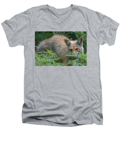 Fox In The Ferns Men's V-Neck T-Shirt