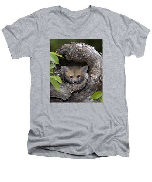Fox Kit In Log Men's V-Neck T-Shirt