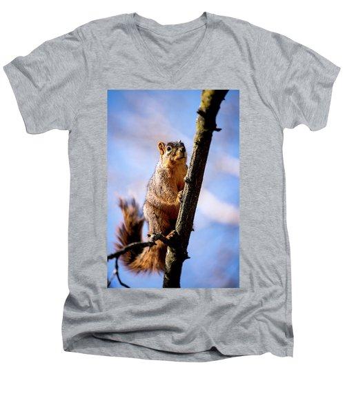 Fox Squirrel's Last Look Men's V-Neck T-Shirt
