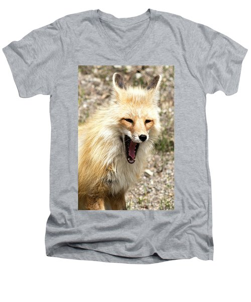 Fox Yawn Men's V-Neck T-Shirt