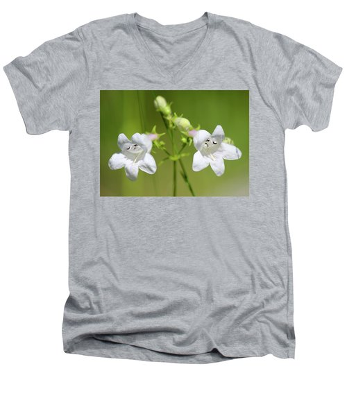 Foxglove Beardtongue Men's V-Neck T-Shirt