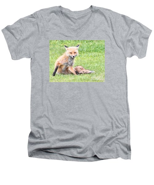 Men's V-Neck T-Shirt featuring the photograph Foxy by Debbie Stahre