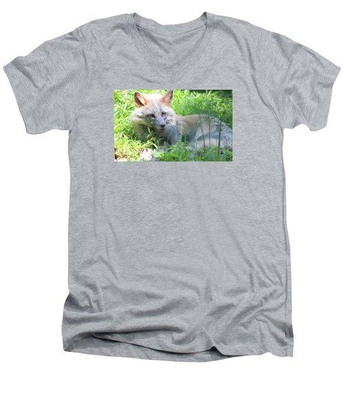 Foxy Men's V-Neck T-Shirt by Debra     Vatalaro