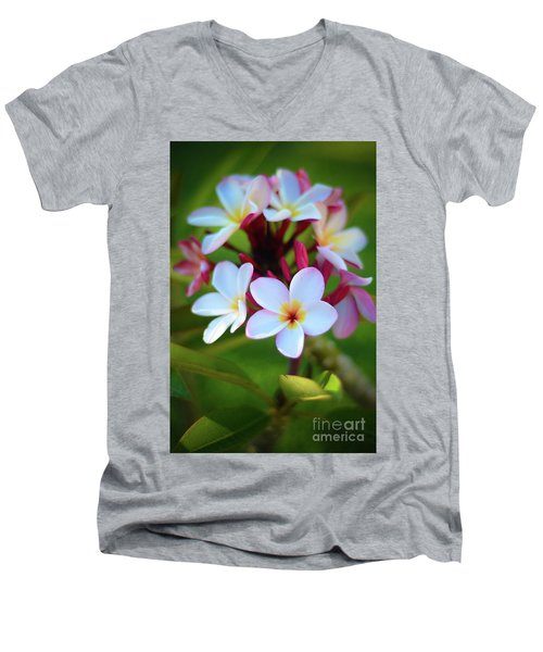 Fragrant Sunset Men's V-Neck T-Shirt by Kelly Wade