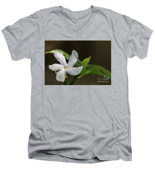 Frangipani Curves Men's V-Neck T-Shirt
