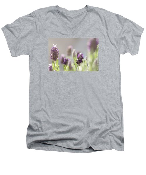 French Lavendar Buds Men's V-Neck T-Shirt by Mary Angelini