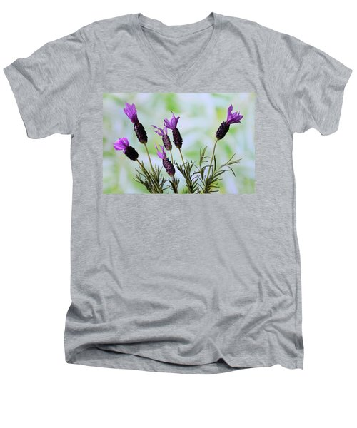 Men's V-Neck T-Shirt featuring the photograph French Lavender by Terence Davis