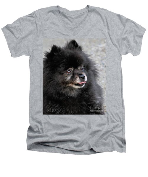Men's V-Neck T-Shirt featuring the photograph Fresh Dog by Debbie Stahre