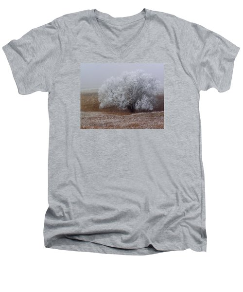 Frost And Fog Men's V-Neck T-Shirt