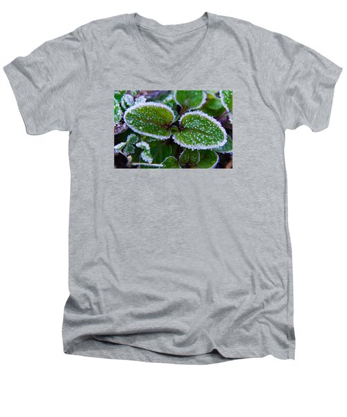 Frosted Edges Men's V-Neck T-Shirt by Adria Trail