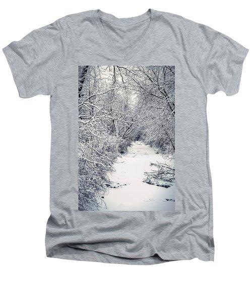 Frosted Feeder Men's V-Neck T-Shirt