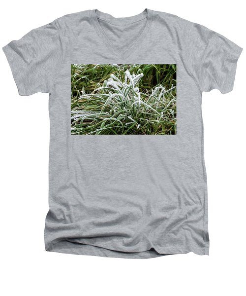 Frosted Grass Men's V-Neck T-Shirt