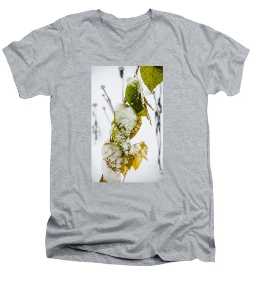 Frosted Green And Yellow Men's V-Neck T-Shirt by Deborah Smolinske