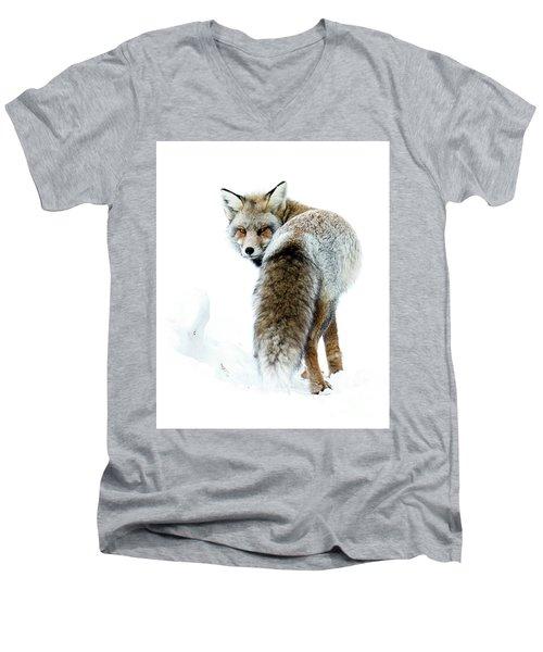 Frosty Fox Men's V-Neck T-Shirt