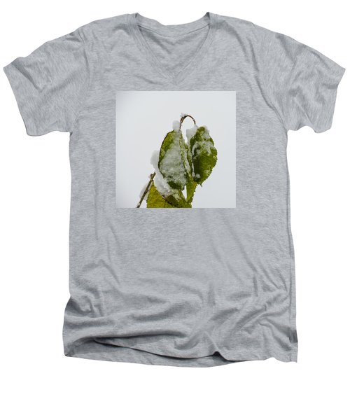 Frosty Green Leaves Men's V-Neck T-Shirt by Deborah Smolinske