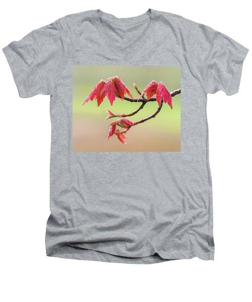 Frosty Maple Leaves Men's V-Neck T-Shirt
