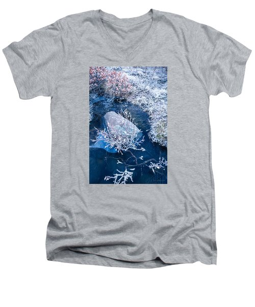 Frosty Pond Men's V-Neck T-Shirt