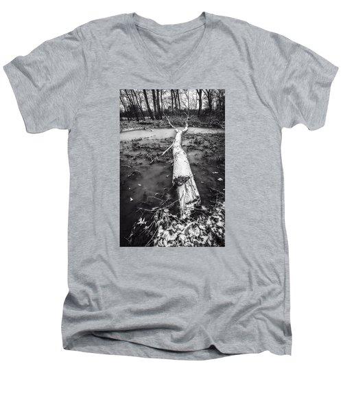 Frozen Landscape Men's V-Neck T-Shirt