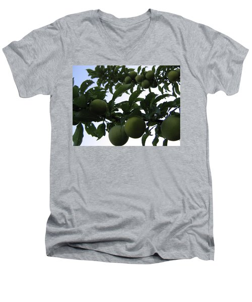 Fruit And Sky_raindrops Men's V-Neck T-Shirt by Barbara Yearty