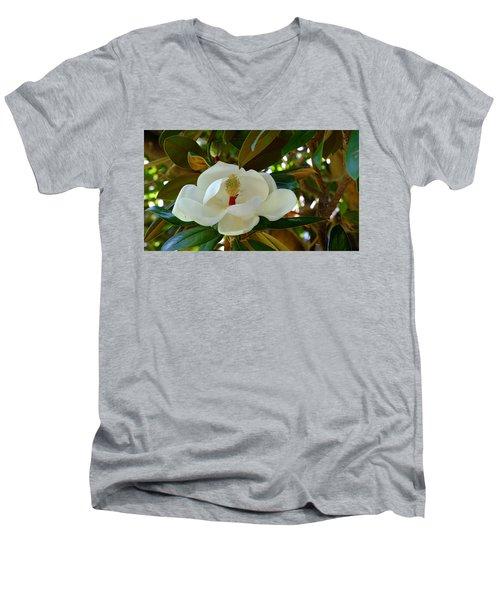 Fulfilment Men's V-Neck T-Shirt