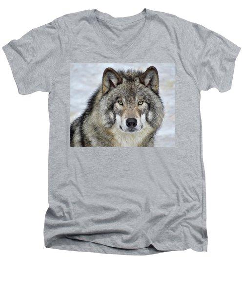 Full Attention  Men's V-Neck T-Shirt