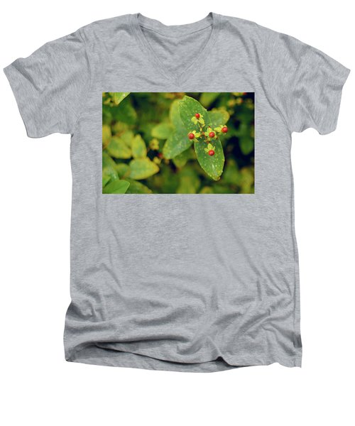 Fall Berry Men's V-Neck T-Shirt