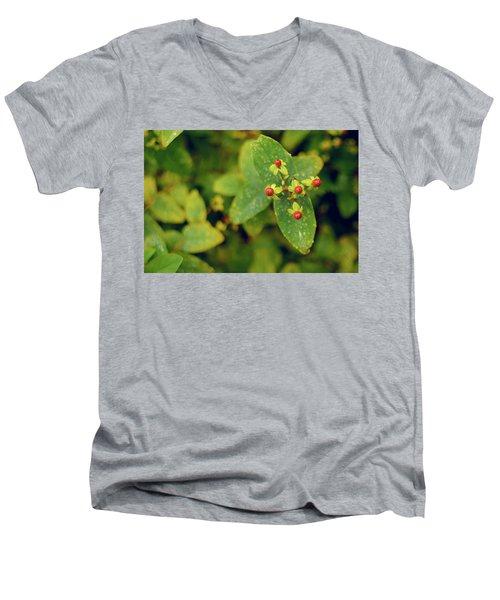 Fall Berry Men's V-Neck T-Shirt