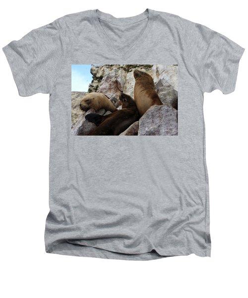 Men's V-Neck T-Shirt featuring the photograph Fur Seals On The Ballestas Islands, Peru by Aidan Moran
