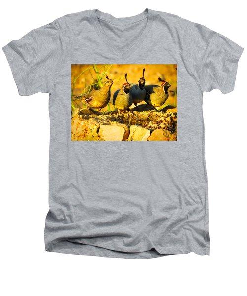 Gambel's Quail Foursome Men's V-Neck T-Shirt