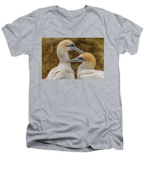 Gannets 4 Men's V-Neck T-Shirt