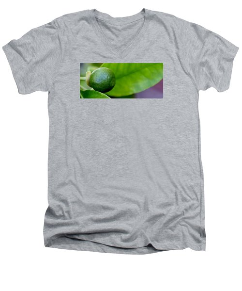 Men's V-Neck T-Shirt featuring the photograph Gapefruit by Werner Lehmann