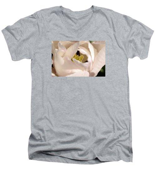 Garden Dance Men's V-Neck T-Shirt