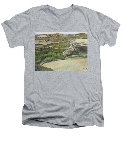 Garden Of Stone Men's V-Neck T-Shirt