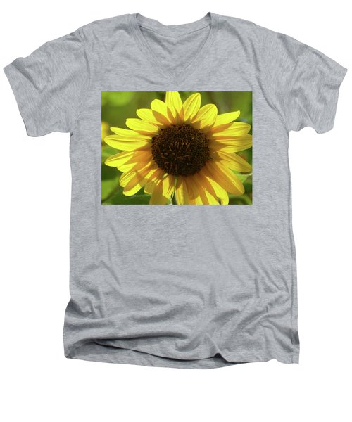 Garden Sunshine Men's V-Neck T-Shirt