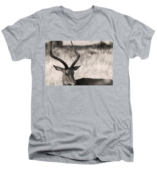 Gazella Men's V-Neck T-Shirt
