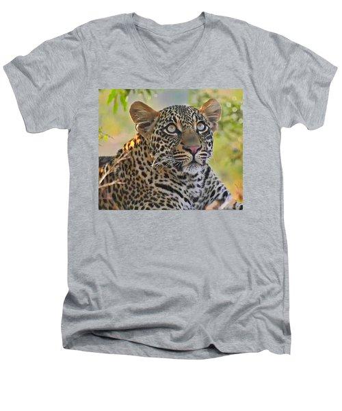 Gazing Leopard Men's V-Neck T-Shirt