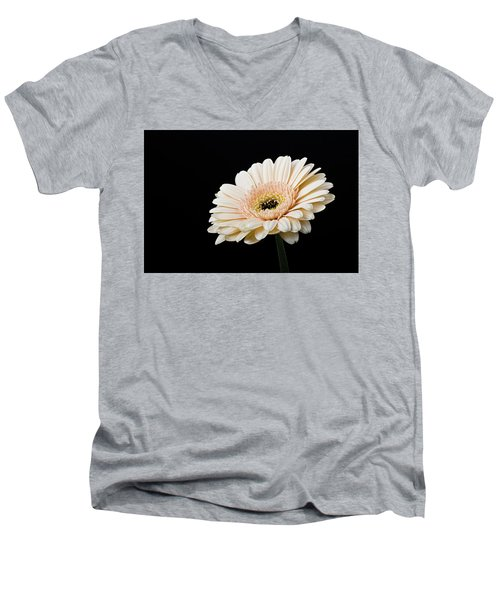 Men's V-Neck T-Shirt featuring the photograph Gerbera Daisy On Black II by Clare Bambers