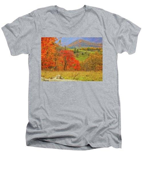 Germany Valley Dressed In Autumn Men's V-Neck T-Shirt