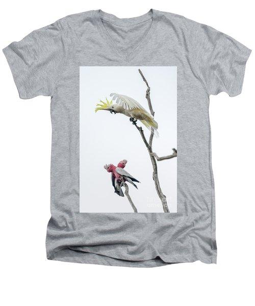 Get Off My Perch Men's V-Neck T-Shirt