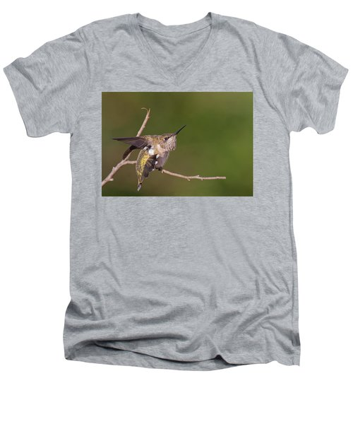 Getting Ready To Fly Men's V-Neck T-Shirt