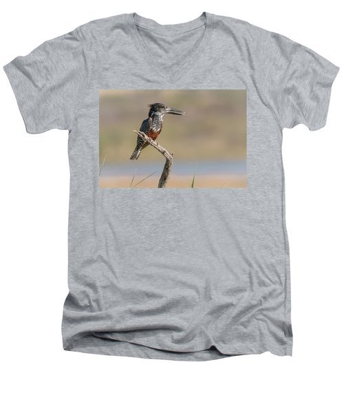 Giant Kingfisher Men's V-Neck T-Shirt