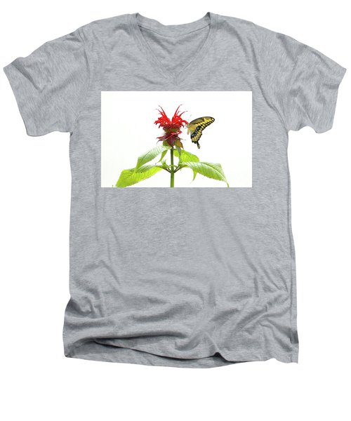 Giant Swallowtail Butterfly Men's V-Neck T-Shirt