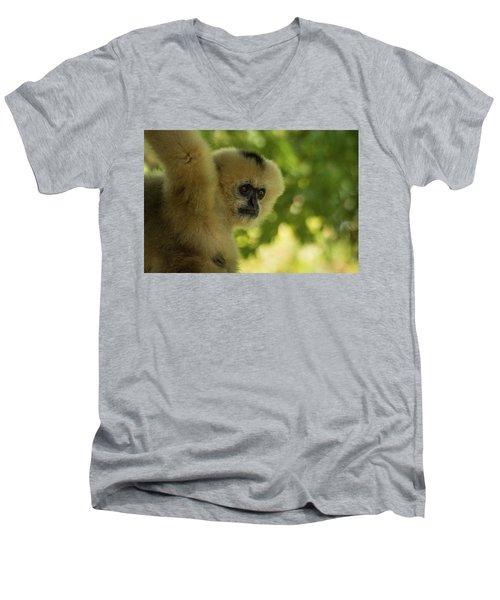 Gibbon Portrait Men's V-Neck T-Shirt