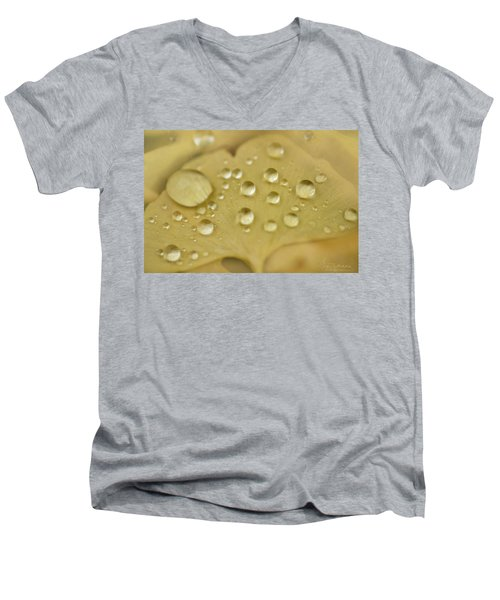 Ginkgo Balls Men's V-Neck T-Shirt