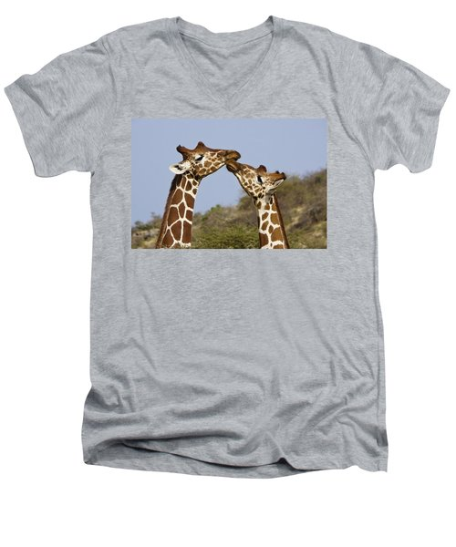 Giraffe Kisses Men's V-Neck T-Shirt