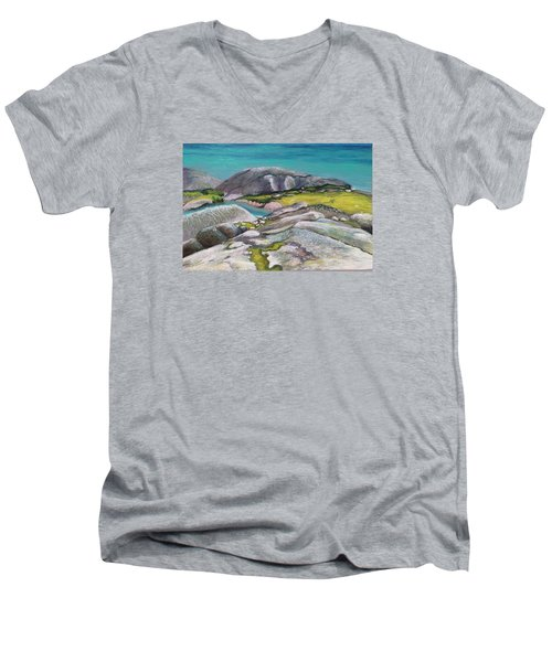 Glacial Lake Men's V-Neck T-Shirt