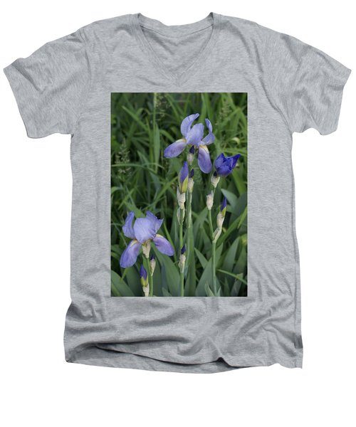 Men's V-Neck T-Shirt featuring the photograph Glads by Cynthia Powell