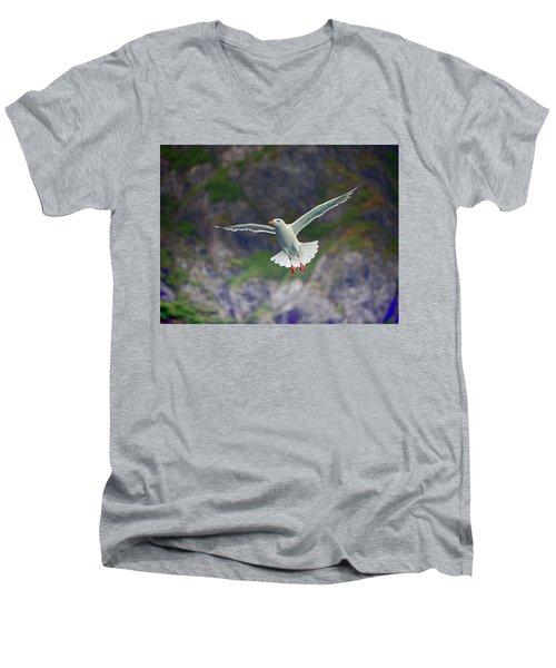 Glaucous-winged Gull Men's V-Neck T-Shirt